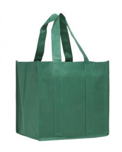 Non-woven PP Shopping Bag 22cm with base